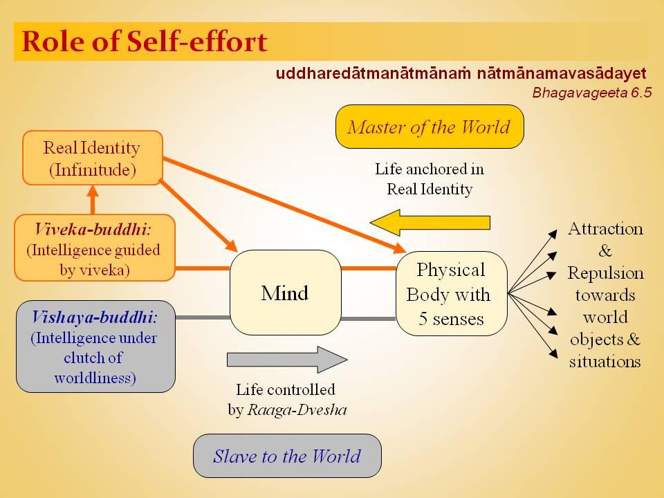 Role_of_Self-effort1